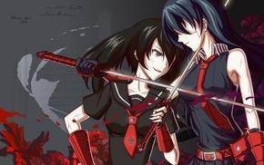 katana, Akame ga Kill, blood
