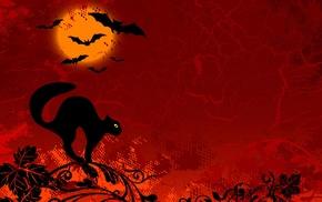 Halloween, black cats