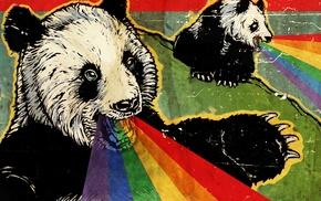 rainbows, panda
