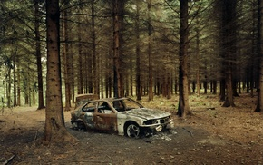 forest, BMW, vehicle, wreck, car