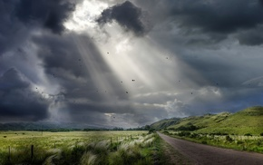 hill, landscape, sky, dirt road, grass, birds