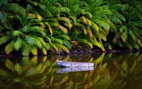 landscape, island, Australia, palm trees, lake, boat