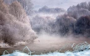 nature, birds, sunrise, river, white, trees