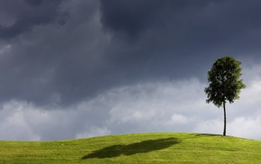 nature, trees, minimalism, hill, shadow, grass