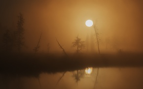 blurred, trees, nature, Sun, lake, silhouette