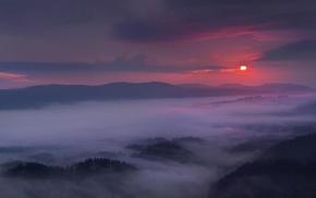 landscape, sunset, sky, forest, clouds, mist