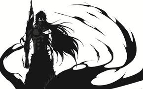 Kurosaki Ichigo, Mugetsu, Bleach