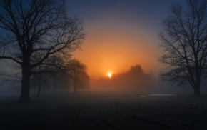 evening, nature, cold, mist, sunlight, morning