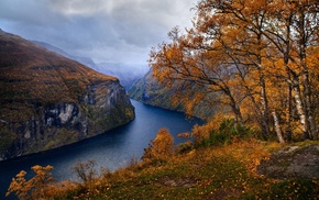 trees, nature, Geiranger, mountain, landscape, clouds