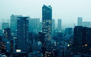 Tokyo, city