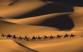 Touaregs, landscape, sand, Morocco, people, desert