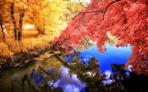 colorful, yellow, fall, lake, trees, landscape