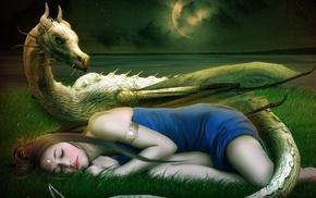 field, stars, tail, sleeping, painting, grass