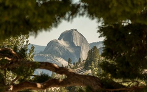 mountain, landscape, trees, depth of field, Half Dome, USA
