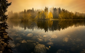 mist, landscape, forest, nature, trees, lake