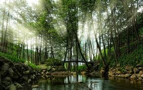 nature, trees, landscape, sunrise, spring, Turkey