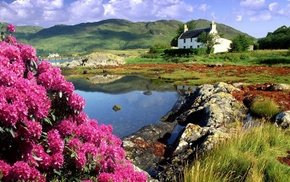 grass, water, rock, architecture, forest, flowers