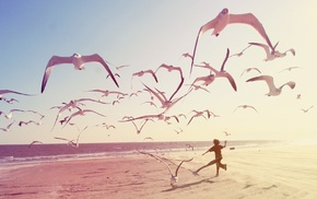 beach, photography, seagulls, children