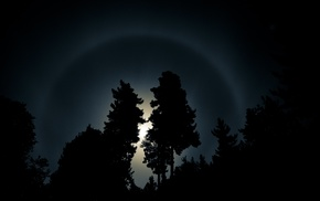 night, rainbows, moonlight, dark, moon, forest