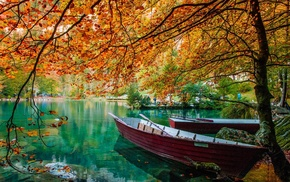 trees, lake, water, landscape, leaves, nature
