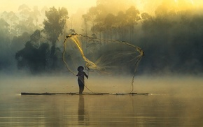 trees, forest, landscape, nature, river, fishing nets