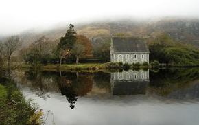 nature, moss, mist, reflection, landscape, bench