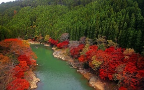 boat, red, Japan, river, forest, fall