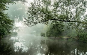 mist, landscape, atmosphere, daylight, nature, water