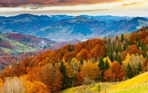 colorful, leaves, clouds, mountain, trees, hill
