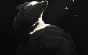 wolf, painting, winter