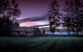 mist, cottage, hut, trees, old, landscape