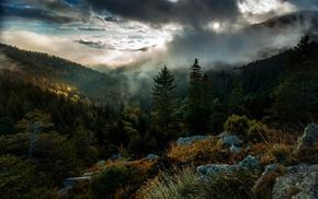 mist, fall, mountain, landscape, sky, nature