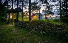 nature, ferns, sunset, Norway, grass, field