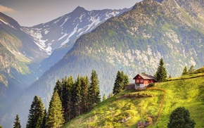 pine trees, field, Switzerland, forest, landscape, house