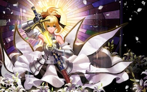 Saber, Saber Lily, Fate Series