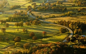 landscape, road, grass, fall, field, trees