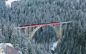 bridge, river, forest, cold, nature, train