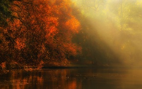 atmosphere, forest, sun rays, mist, river, landscape