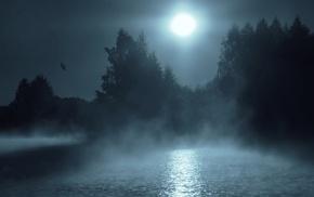 reflection, blue, lake, landscape, trees, flying
