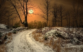 landscape, winter, Norway, snow, mist, dry grass