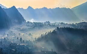 village, mist, sunrise, trees, mountain, forest