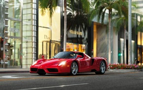Ferrari, Ferrari Enzo, palm trees, car, street