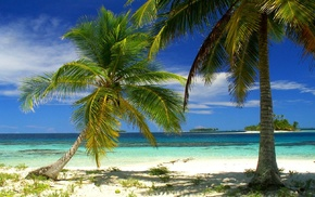 island, beach, tropical, Panama, palm trees, nature