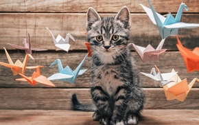 baby animals, kittens, origami, cat, depth of field, thread