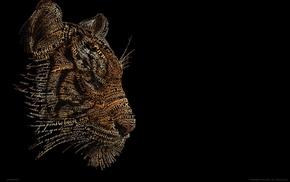 tiger, Russia