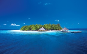 island, coral, bungalow, pier, palm trees