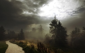 dark, nature, path, clouds, forest, landscape