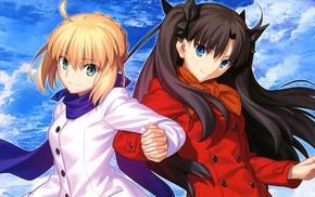 Saber, Fate Series, Tohsaka Rin