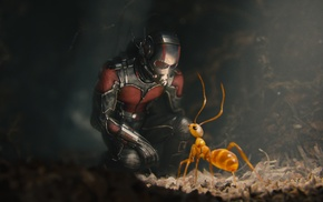 Ant, Man, movies, fantasy art, ants