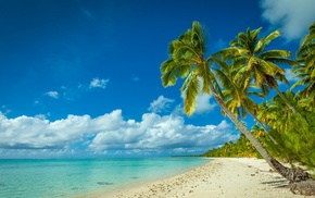 summer, tropical, palm trees, white, clouds, sand